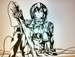 Mikasa Ackerman Fan Art by Raptchur