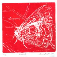 Butterfly Lino Red by Correlation