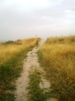 Be running up that hill by shults