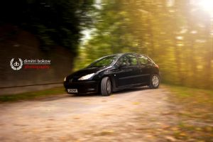 Peugeot 206 by DimitriBokowPhoto