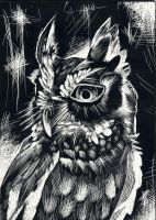 Owls by Huaman-Abstract