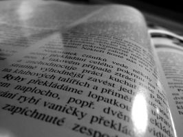 reading in czech book by Pauline-graphics