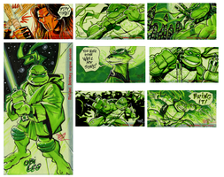 TMNT SKETCH CARDS on Ebay by MichaelDooney