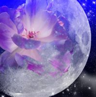 moon flower by Darla-Illara