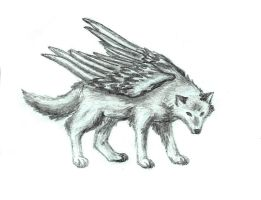 Wing Wolf by Katalisk