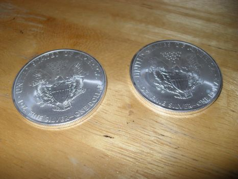 Two Brand New Silver Eagles 2012 Back by Miss-Merlina