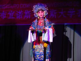 Beijing Opera performer 1 by stockdeana