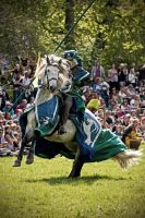 The Green Knight by attomanen
