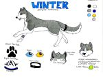 Winter NEW ref by Shimmeron