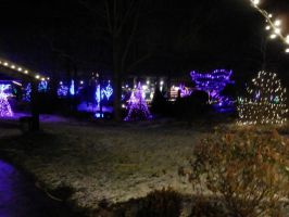 Christmas lights at Creation Museum by Huop