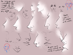 Different nose types by moni158