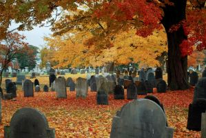 Autumn Cemetery IV by lionfeathers