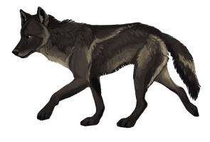 WOLF PREMADE: SOLD by savage