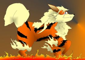 Arcanine Colored by Ambience19