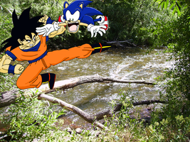 Sparring: Goku VS Sonic by sonigoku