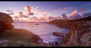 Lizard Point by geckokid