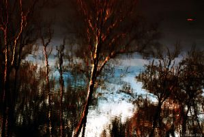 Reflections on the Haw by kmhanner