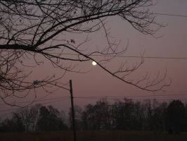 Morning Moon 2 by Night-Forager