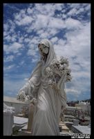 Our Lady of the Flowers by neurolepsia
