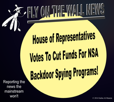 House Votes To Cut NSA Funding! by IAmTheUnison
