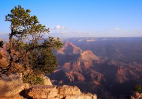 Grand Canyon by simple-squamous
