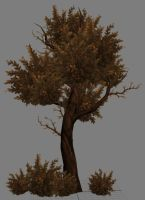 handpaint tree by padark