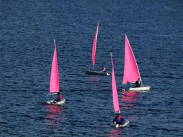 Pretty coloured sails by Heylormammy