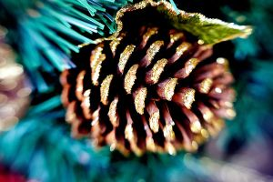 Gold Glitter Pinecone by LDFranklin