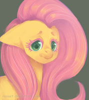 Fluttershy by rosaet