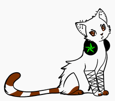 CAT ADOPTABLE- CLOSED by CollectionOfWhiskers
