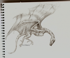 Wyvern by Elhanna