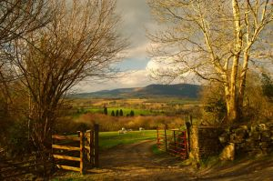 Wicklow Mountains by Petebb