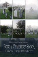 Foggy Cemetery Pack1 by lindowyn-stock