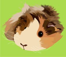 Guinea Pig I by pullmeoutalive