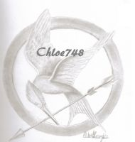 Hunger Games Symbol in Graphite by chloe748