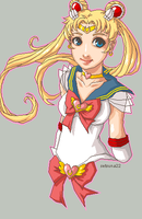 Sailor Moon by setsuna22