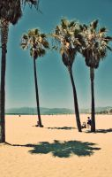 Venice Beach xix by break-my-heart