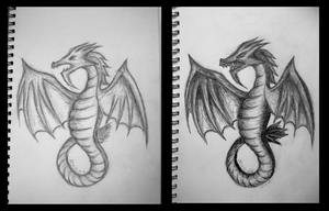 Dragon: Before and After by AlexRose312