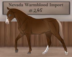 Nevada Warmblood 245 by BRls-love-is-MY-Live