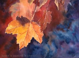 Autumn leaves by Lillian-Bann