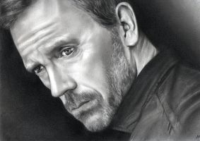 """Hugh Laurie """"House MD"""" by Stefouine"""