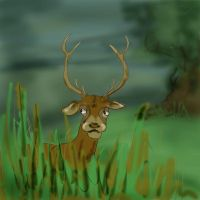stag in woods by inner-etch