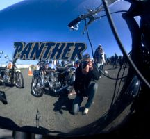 Panther by Gilly71