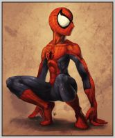 Spiderman. just there by GatoDelCielo