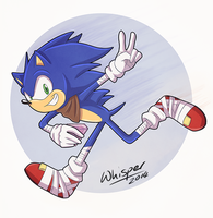 Sonic Boom by WhisperOrca