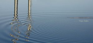 waves and reflexion by cachealalumiere