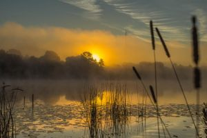 Mist River 06 by Artursphoto