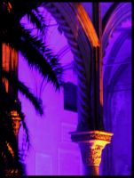cathedral in violet by siralbus