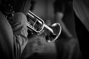 Saturday Trumpeteer by jeffcrass