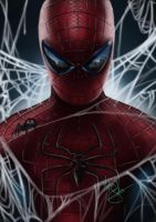 spiderman 2012 by Martin-Saelens